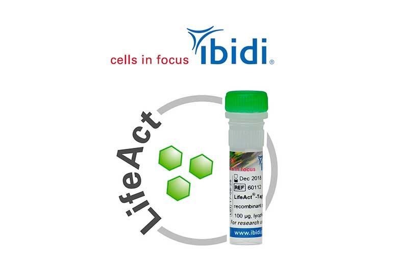 25% de descuento en mRNA LifeAct-TagGFP2 de ibidi