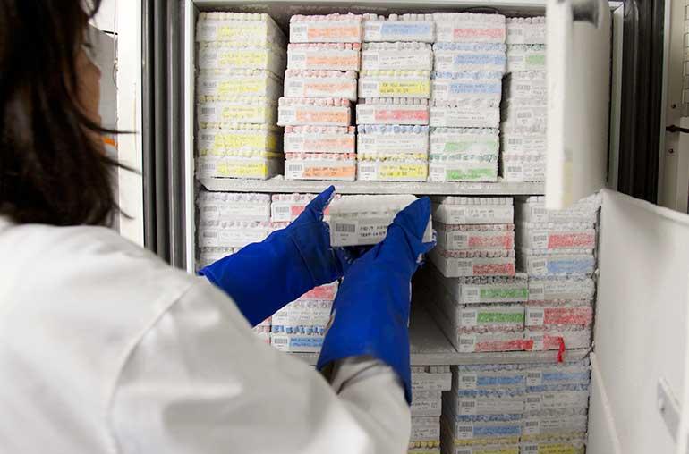 Sobre la conservación de muestras por congelación