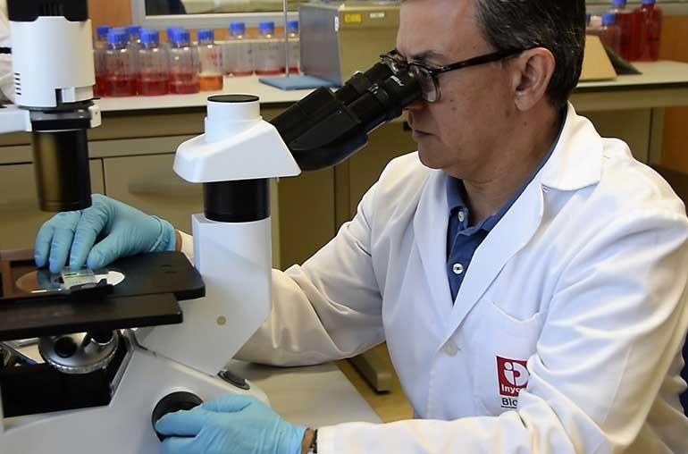 Anticuerpos monoclonales contra la toxina marina que afecta a los mejillones