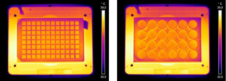 Control de Temperatura homogéneo en cada pocillo